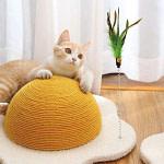Fried Egg Cat Scratcher